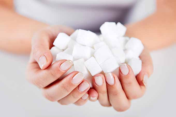 Hands Holding Sugar Cubes | Foodal.com