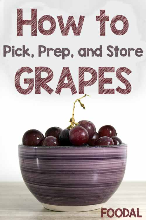 Do you know how to store grapes the right way? Foodal has some secrets to share. Discover the proper methods to ensure that this juicy, flavorful fruit stays fresh longer, plus tips for shopping and prep. No more soggy, soft, or spoiled grapes (and no more money wasted on an often expensive fruit, once you know how to extend its shelf life)! Read more here: https://foodal.com/knowledge/how-to/store-grapes/