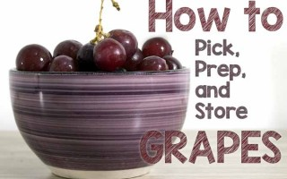 How to Pick Prep Store Grapes | Foodal.com