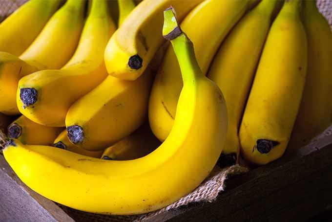 Pile of Bananas | Foodal.com
