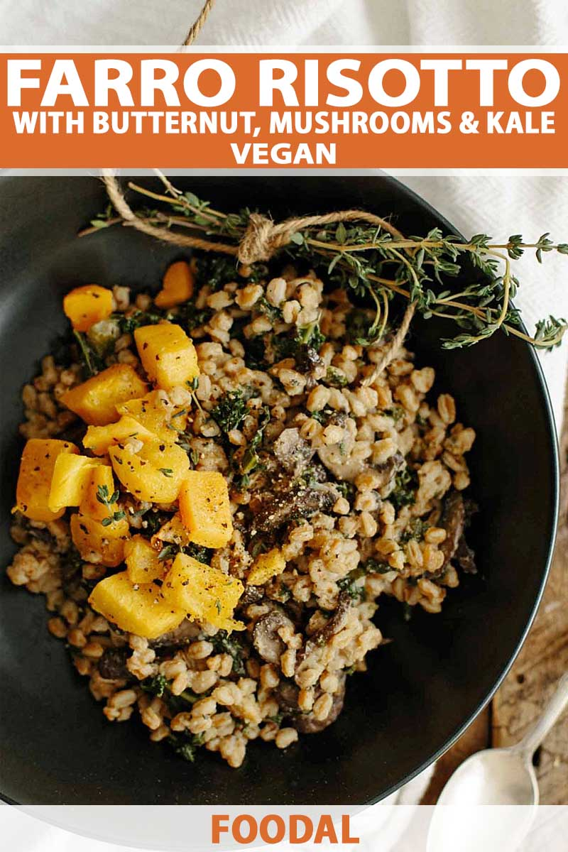 Top down view of vegan Farro Risotto with Mushrooms & Kale dish in a nonstick frying pan.