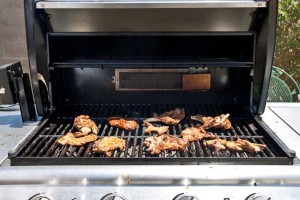 The Best Full-Sized Gas BBQ Grills for Your Patio or Backyard