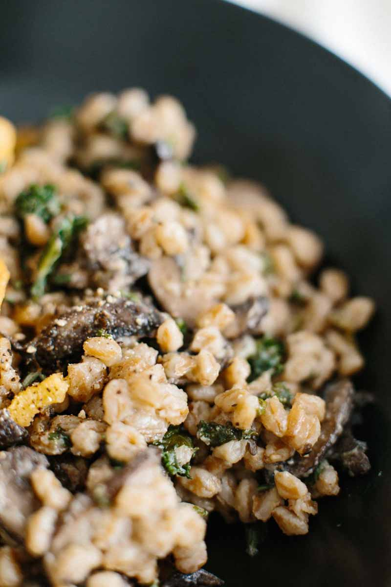 A macro view of a Farro Risotto with Mushrooms & Kale dish with extreme depth of filed with the focus only on a small spot of the food.