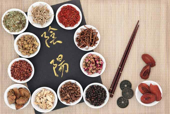 Rhubarb in Chinese Medicine | Foodal.com