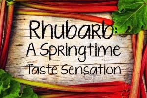 Rhubarb: A Springtime Taste Sensation