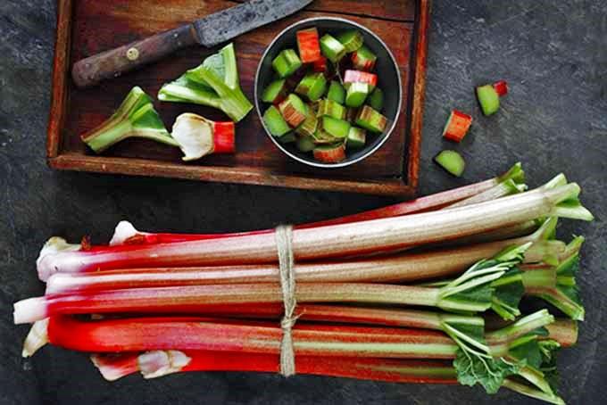 Rhubarb Stalks | Foodal.com