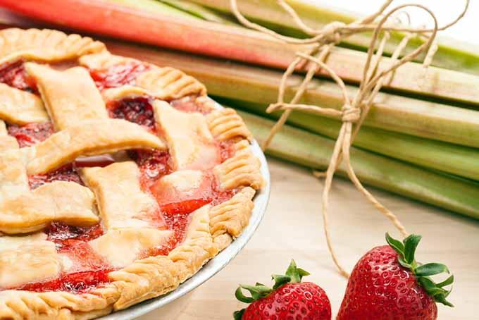 Strawberry Rhubarb Pie   Foodal.com