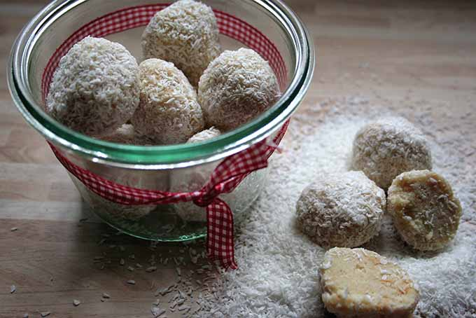 White Chocolate Coconut Candies | Foodal.com