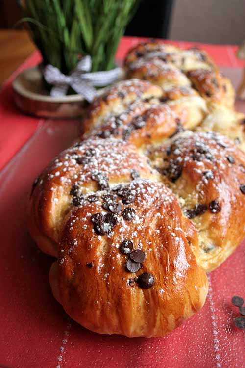 A slice of braided bread? Always a winner! This one combines irresistible flavors of banana and chocolate for a yummy recipe. Learn to make it here at Foodal: http://foodal.com/recipes/breads/chocolate-banana-yeast-bread/