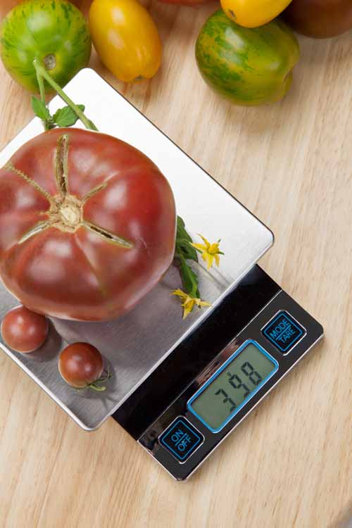 A digital kitchen scale takes the guess work out of measurements. http://foodal.com/kitchen/general-kitchenware/guides-general-kitchenware/essential-gear/