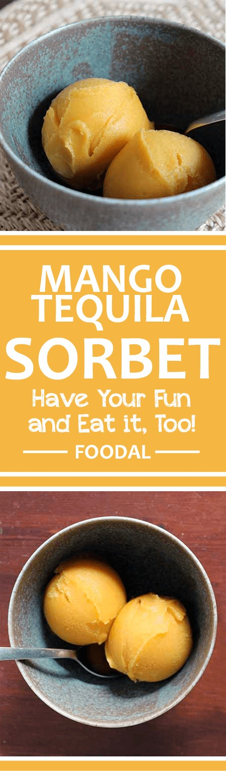 For the best Cinco de Mayo party on the block, try serving this homemade tequila mango sorbet! Check out our simple recipe to learn more about this boozy treat, made with fresh mango. It's perfect for the fifth of May, or anytime that mangoes are in season. Read more on Foodal. https://foodal.com/recipes/desserts/mango-tequila-sorbet/