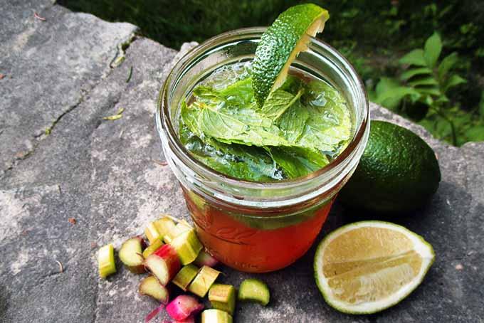 Rhubarb Mojito with Spearmint | Foodal.com