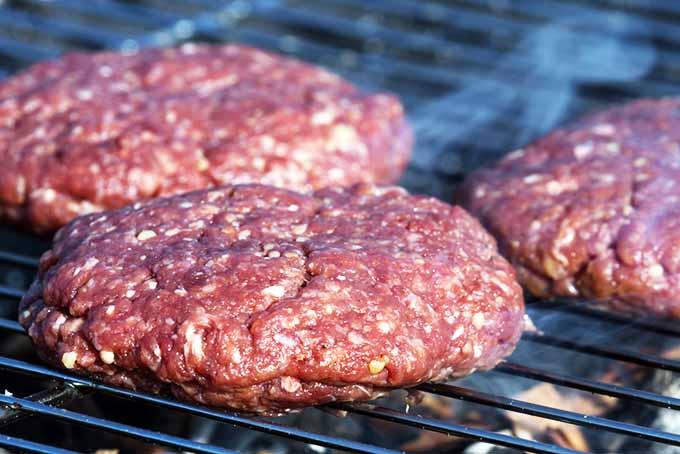 Bison Burgers | Foodal.com