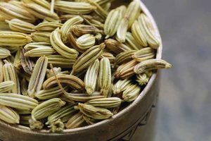 Seasoning & Healing Effects of Fennel Seed