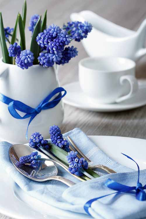 Looking for a little springtime decoration inspiration? Foodal's got you covered with our top tips for setting your table right this spring. Read more: https://foodal.com/knowledge/how-to/springtime-table-setting-tips/