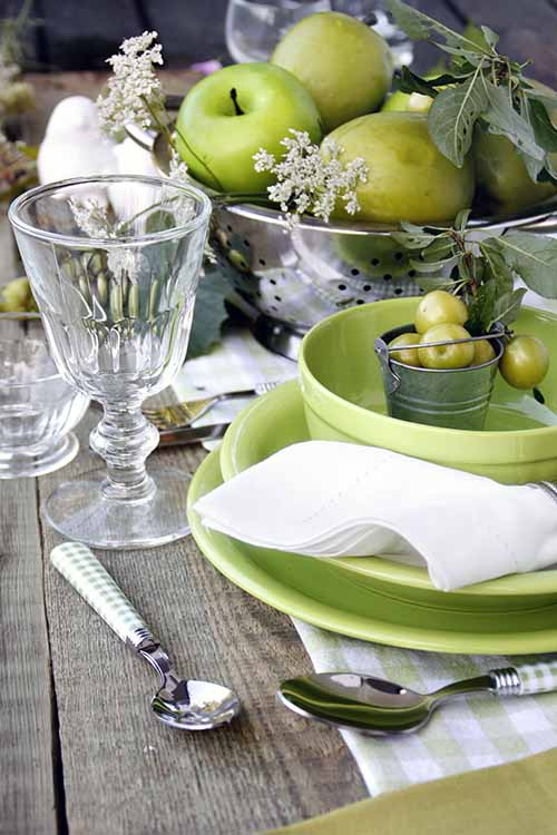 Setting the table in spring is a true joy, with so many options to choose from- fresh flowers, fruit, herbs, natural elements, and a variety of color palettes and styles to pick from. Read more now on Foodal: https://foodal.com/knowledge/how-to/springtime-table-setting-tips/‎