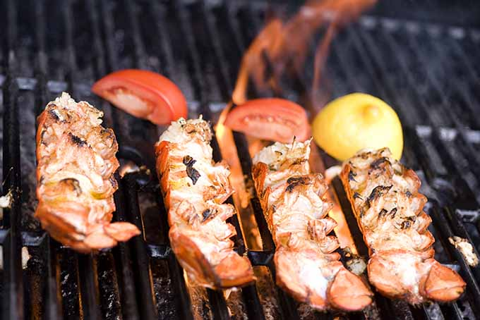 Grilled Lobster | Foodal.com