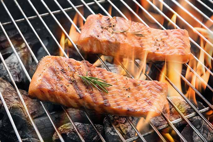 Grilled Salmon   Foodal.com