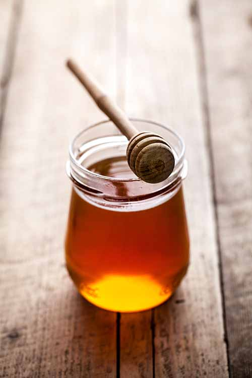 Honey is sweet, sticky, and simply delicious. Learn more about different varieties that can be really healthy for you, too! Read more on Foodal: https://foodal.com/knowledge/paleo/honey-types-and-healing-properties/‎