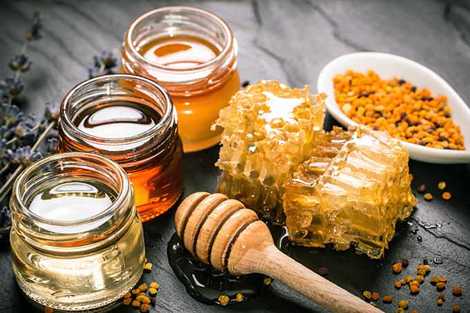Honey Varieties with Comb and Pollen | Foodal.com
