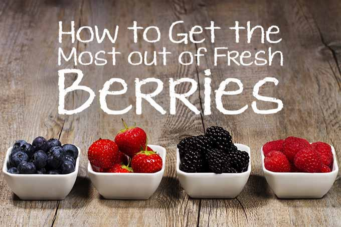 How to Store Berries | Foodal.com