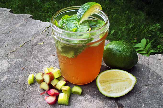 A Rhubarb Mojito made in a canning jar siting on a rock ledge with pieces of chopped rhubarb stock and whole and half limes.