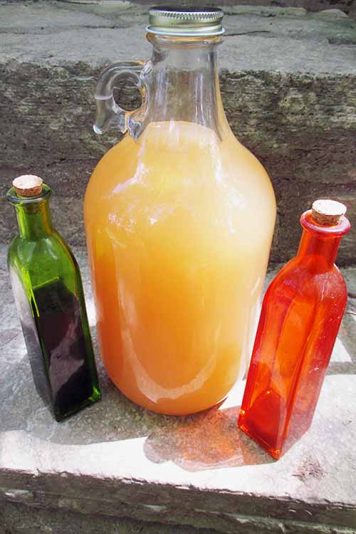 What are shrubs and drinking vinegars? They're a fabulous, healthy, and refreshing mix of sweet fruits with sour vinegar. Learn to make them here: https://foodal.com/recipes/pickles-and-fermentations/shrubs-drinking-vinegars/