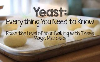 Baking with Yeast | Foodal.com