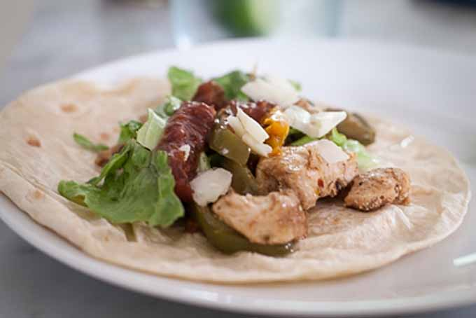 Close up of an Easy Chicken Fajita on a white, porcelain plate.