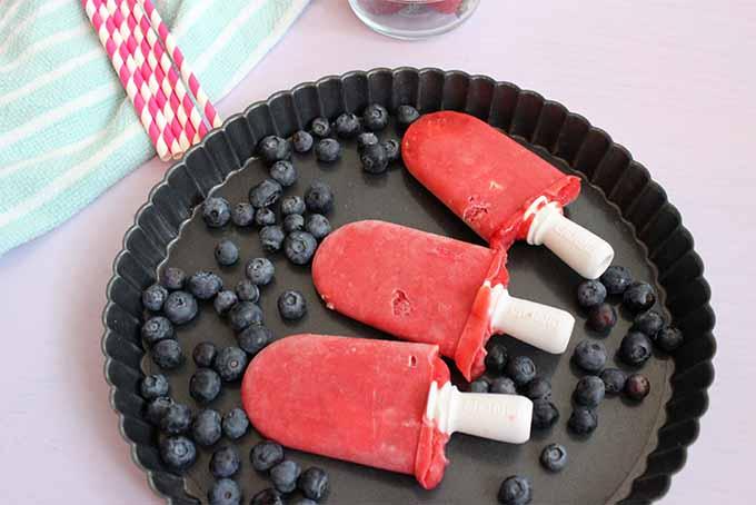 Three Berry Popsicles | Foodal.com