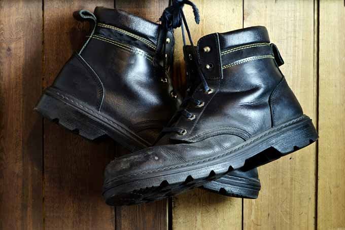 Black Work Shoes | Foodal.com