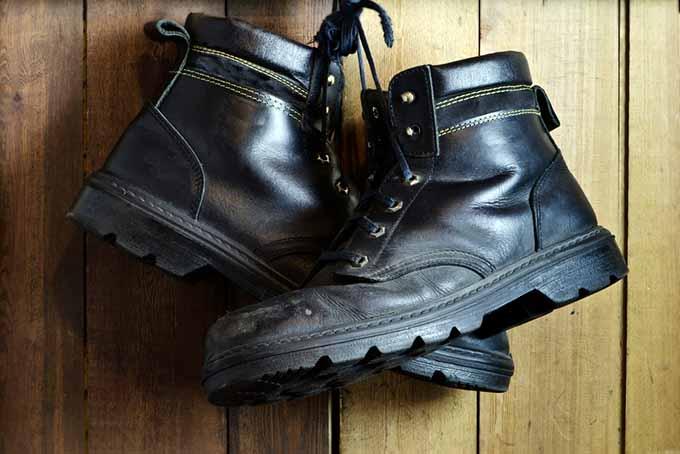 Black Work Shoes | Foodal.com