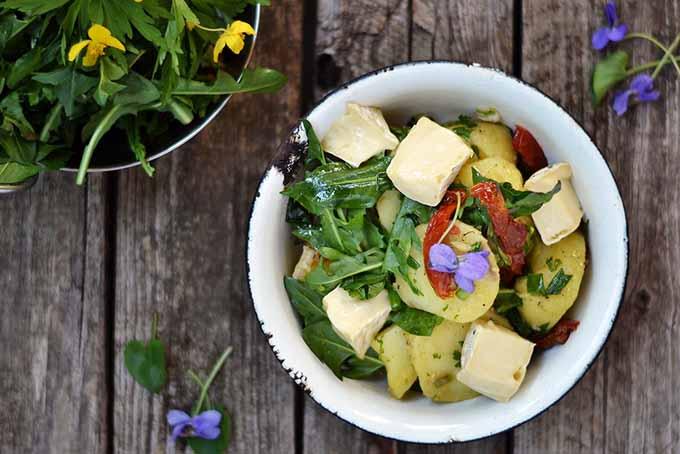 Cooked Dandelion Greens Dish | Foodal.com