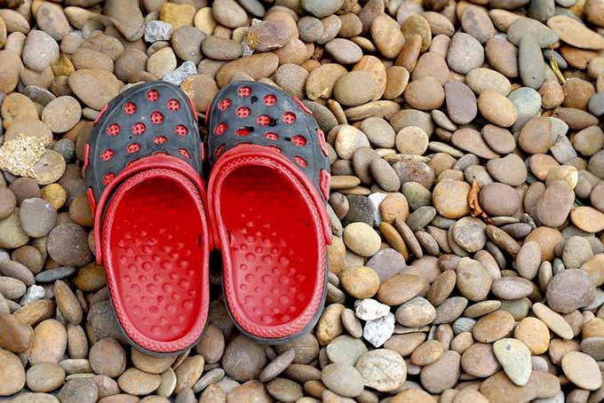 Crocks Cooking Footwear | Foodal.com
