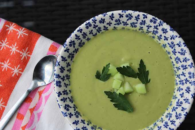 Creamy Coconut Avocado Soup with Cucumber and Fresh Herbs | Foodal.com