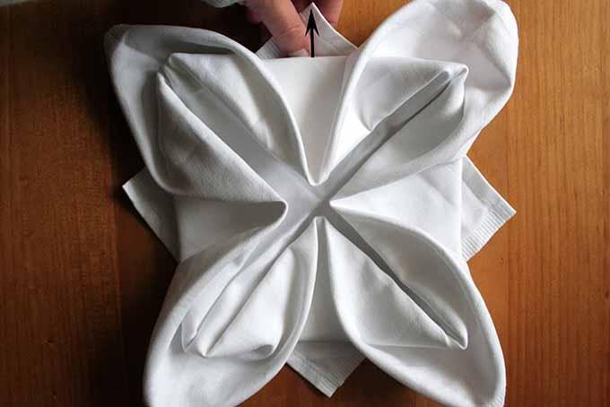 Lotus Fold Step 6 | Foodal.com