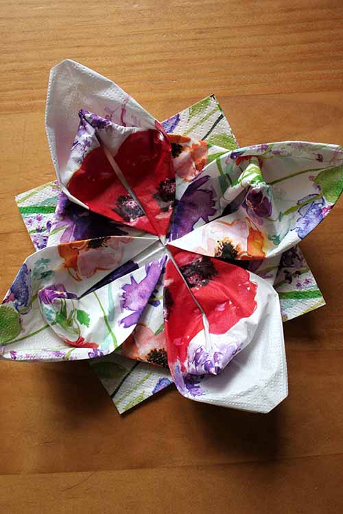 Lotus Napkin Fold Easy : the lotus fold, and other tricks of napkin folding in a few simple