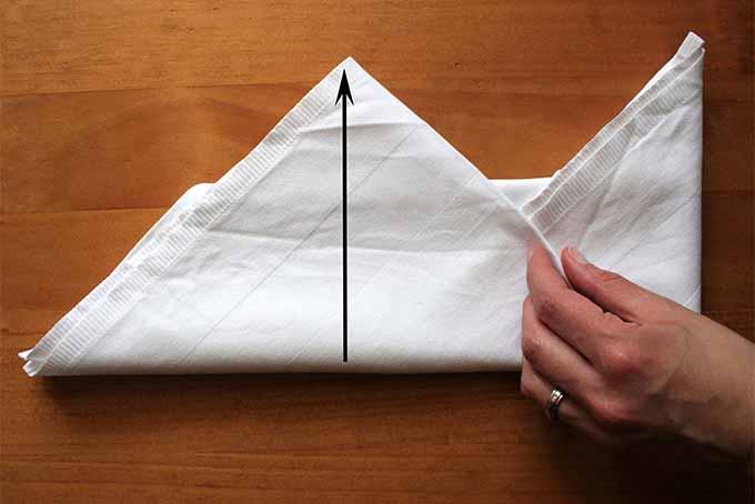 Miter Fold Step 9 | Foodal.com