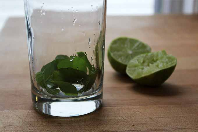 Muddling Mint and Lime | Foodal.com