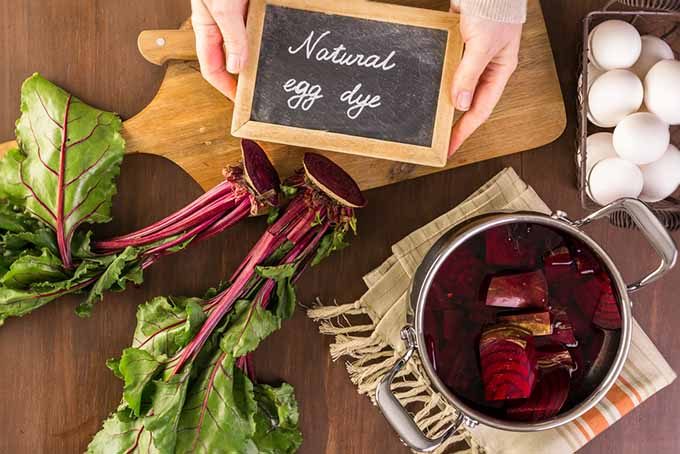 Natural Food Dye Beets | Foodal.com