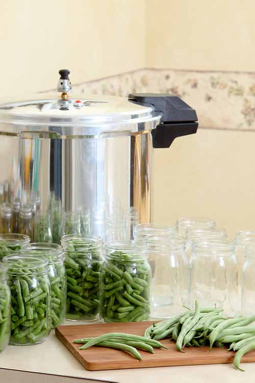 Become a home-canning machine with the use of a powerful pressure canner! If you're still unsure of how safe or practical they are, however, our in-depth guide will answer all your questions. https://foodal.com/kitchen/kitchen-appliances/pressure-cookers/best-canners/