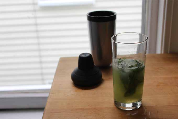 Shaker Method Tomatillo Mojitos | Foodal.com