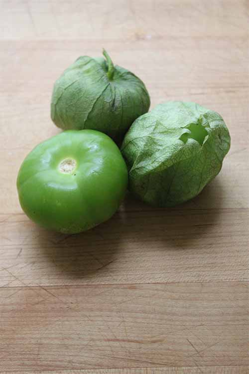 Sick of salsa verde? Whip up a batch of refreshing Tomatillo-jitos! We have the recipe on Foodal: http://foodal.com/drinks-2/alcoholic-beverages/tomatillo-mojito/