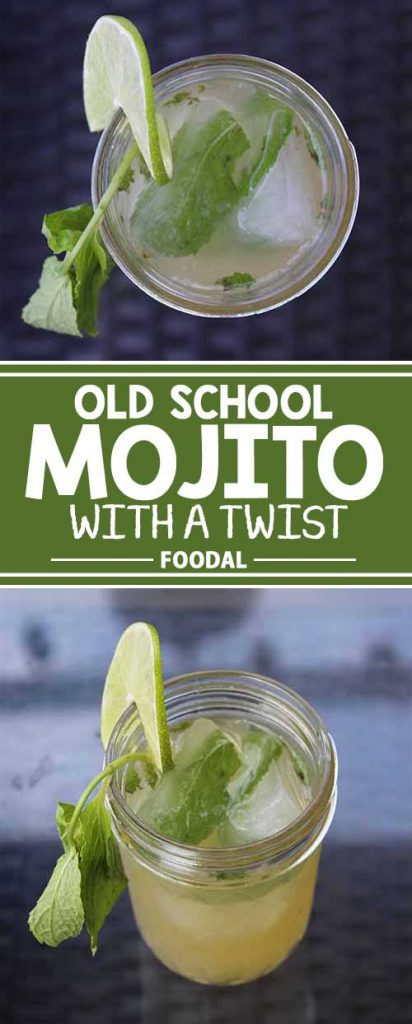 No matter how you mix it, we love a refreshing mojito. But sometimes the classic Cuban style is all you need to hit the spot. Hate it when your minty, delicious mojito becomes watery and unappealing on a hot day? Learn how to avoid this with one simple trick. If you want the perfect chilled cocktail that never gets watered down by ice, then give this method a try! Try it now.