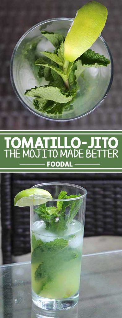 If you love the refreshing minty flavor of a mojito, you will go head over heels for this twist. The tart juice of fresh tomatillos add a fun kick to this classic drink. It's the perfect addition to any cookout, to sip by the pool, or to drink on the beach. This recipe can be adjusted to make a single serving or a full pitcher. Get the recipe now!