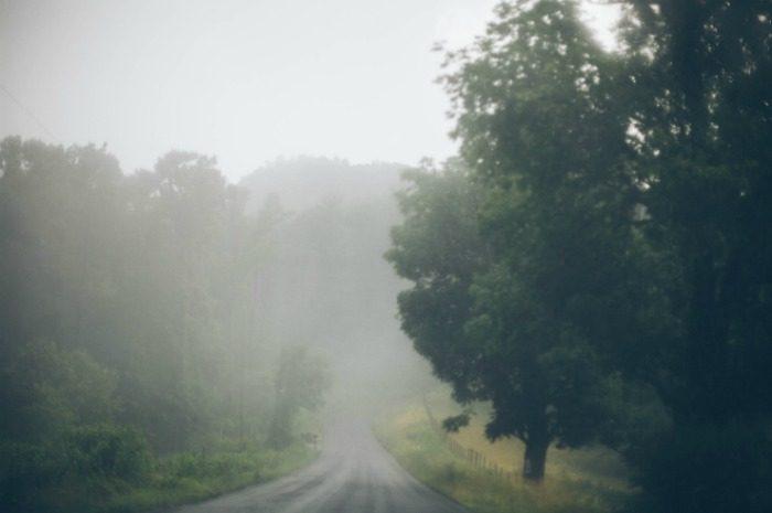 asheville fog