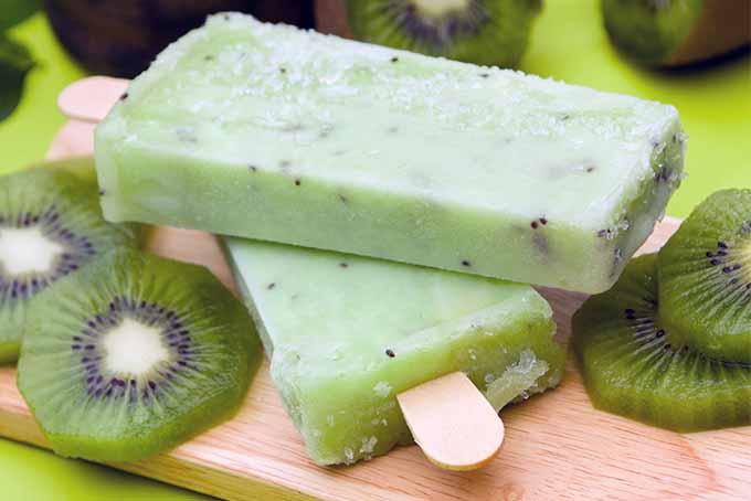 Kiwi Paletas | Foodal.com
