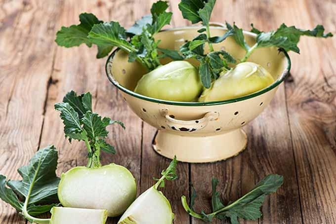 Kohlrabi in a Colander | Foodal.com