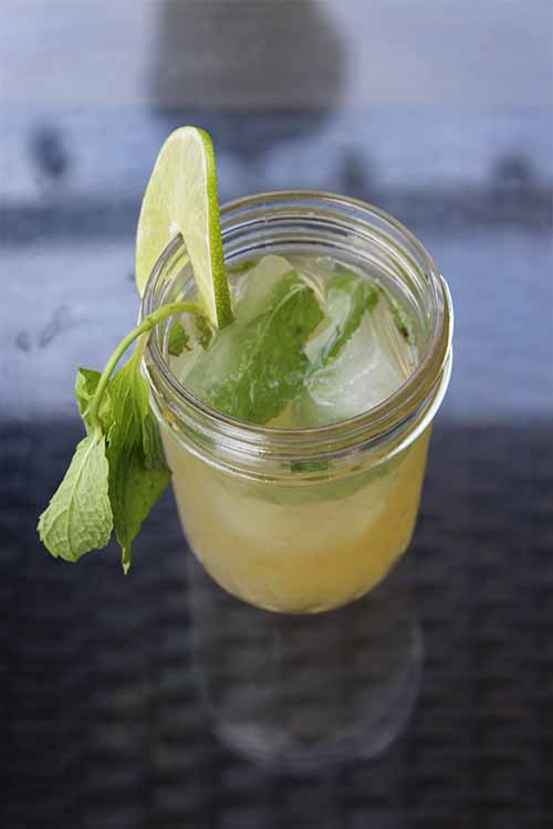 In the warm weather, it's all too easy for your crisp, delicious cocktail to quickly become watery and unappealing. Learn how to avoid this with one simple trick. Read more now on Foodal: http://foodal.com/drinks-2/alcoholic-beverages/mojito-mint-lime-ice-tea/ ‎