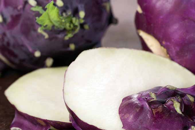 Sliced Purple Kohlrabi | Foodal.com